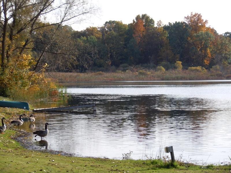 Flanders Lake West Bloomfield MI