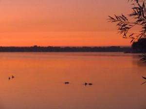 Union Lake Oakland County Michigan