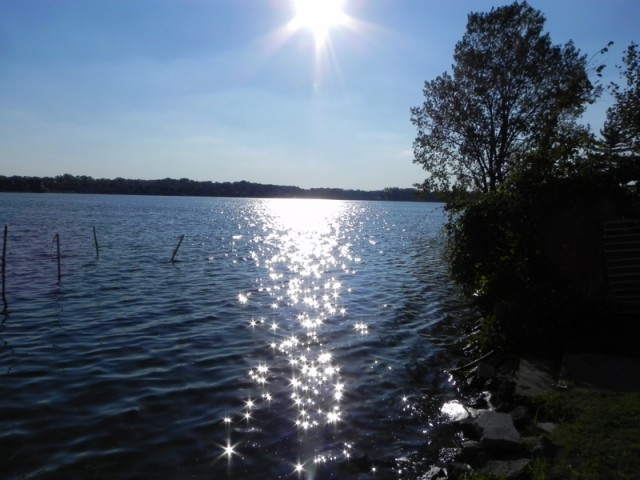 Loon Lake Oakland County Michigan