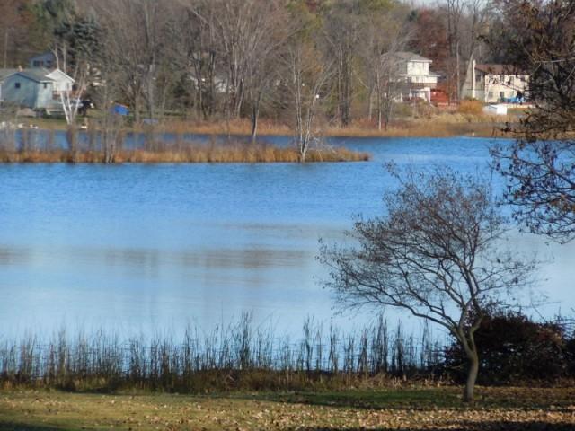 Bitten Lake/ Wallace Lake Brighton Michigan