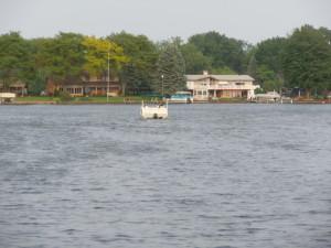 Boating on Lake Sherwood Commerce MI