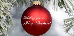 merry christmasn pic